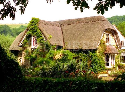 Country Cottages Isle Of Wight by 174 Best Countryside Images On