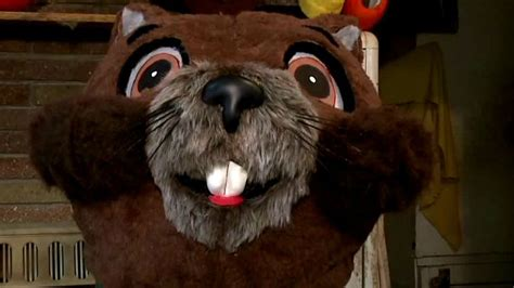 groundhog day costume new plans for groundhog day in sun prairie this year