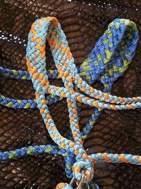 images  halters  pinterest headstall paracord  tack