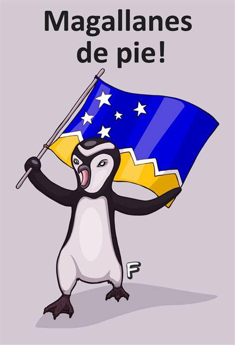 imagenes del magallanes caricaturas del pinguino related keywords caricaturas