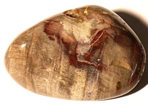handschmeichler selber machen versteinertes holz allgemein heilsteine edelsteine v