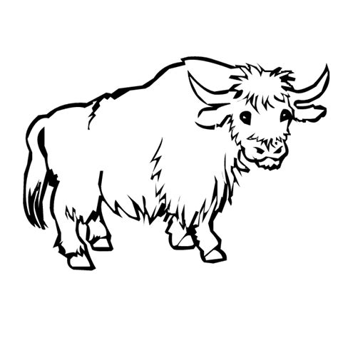 free coloring pages yak yak coloring page animals town animals color sheet