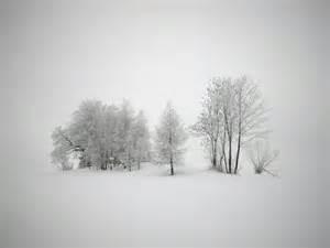 C 24 Desk 冬天小树风景桌面背景图片高清大图预览1024x768 风景壁纸下载 彼岸桌面
