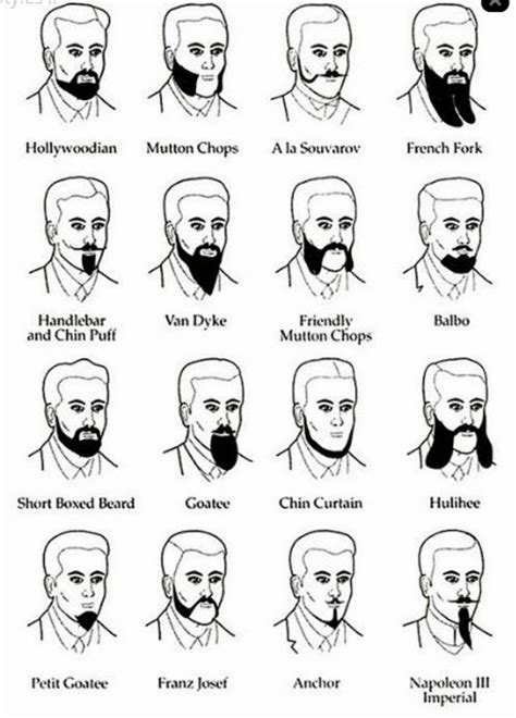 names and types of hairstyles beard types and names www pixshark com images