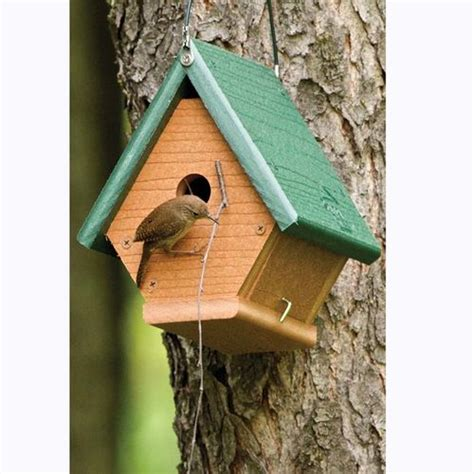 house wren bird going green wren bird house at brookstone buy now