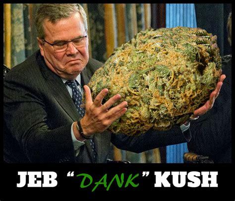 Jeb Bush Memes - jeb kush meme dank weed meme jeb bush memes on pot