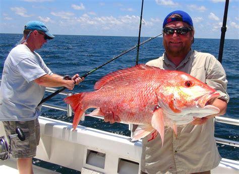 charter boat fishing orange beach al orange beach deep sea fishing charter action charter service