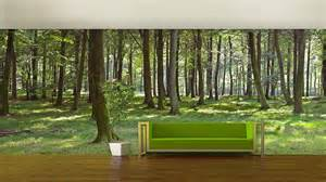 Painted Murals On Walls woodland forest self adhesive wallpaper by oakdene designs