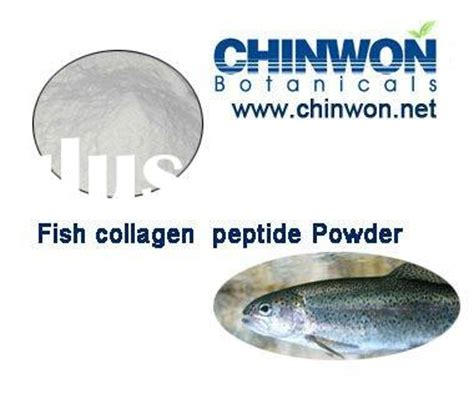 Royal S Fish Peptide Collagen collagen peptide collagen peptide manufacturers in lulusoso page 1