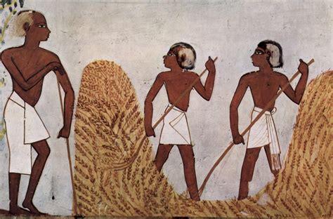 imagenes de egipcios trabajando agricultura eg 237 pcia antigo egito site