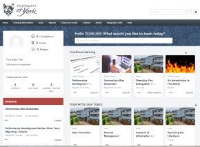 homepage layout manager welcome to human resources at the university of york
