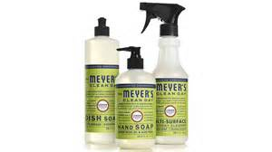 Ellen Sturm Niz by Are Pricier Cleaning Products Worth The Cost What To Know