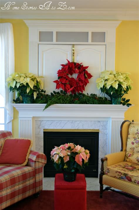 Decorating With Poinsettias by Decorating With Poinsettias Poinsettia Home Stories A To Z