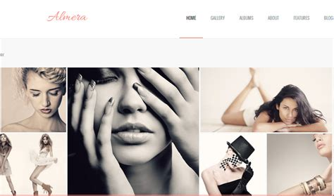 professional photographer wordpress template a wordpress