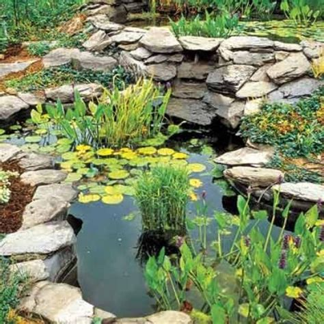 backyard pond plants 67 cool backyard pond design ideas digsdigs