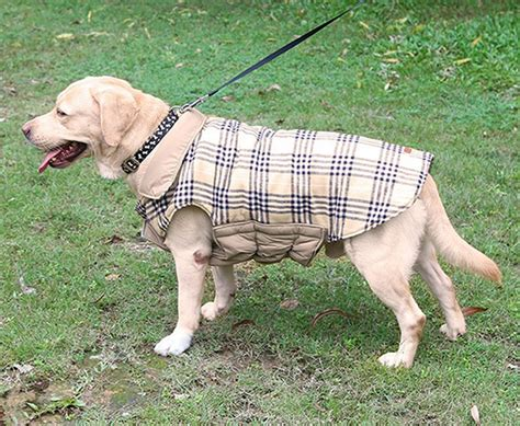 pattern for quilted dog coat reviews of the best dog coats for labs and other large breeds