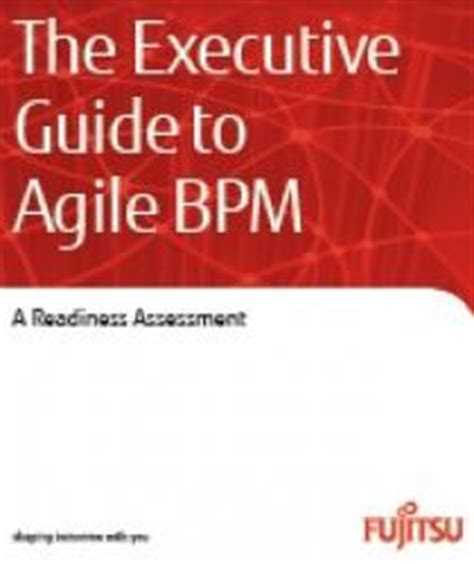 the clarity papers the executive s guide to clear thinking and better faster results books the executive guide to agile bpm bpminstitute org