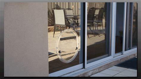 Adelaide Pet Doors Glenelg Sa - glass adelaide pet doors