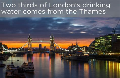 Thames River Facts | interesting facts about the river thames others