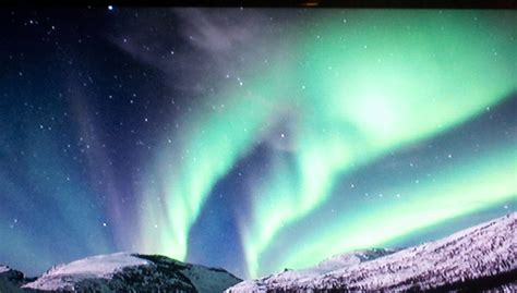 Where Are The Northern Lights Located by The Light In Covington Travel