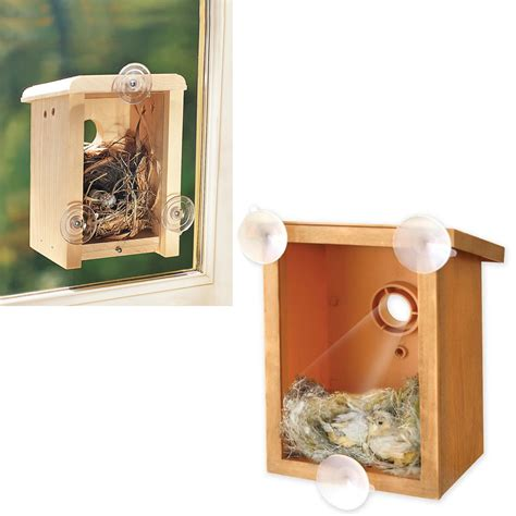 top 28 birdhouse with clear back window view bird