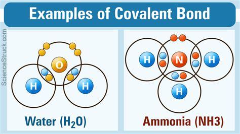 covalent bond exles