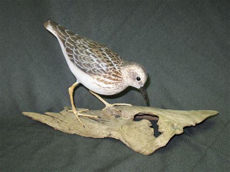 Paper Bird Sculpture least sandpiper jan fitch art in wood