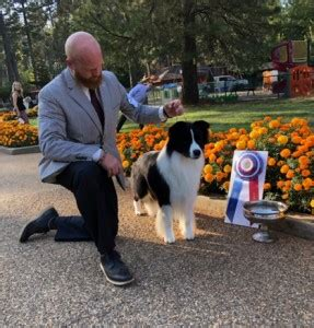 gold country kennel club – sunday, september 2, 2018