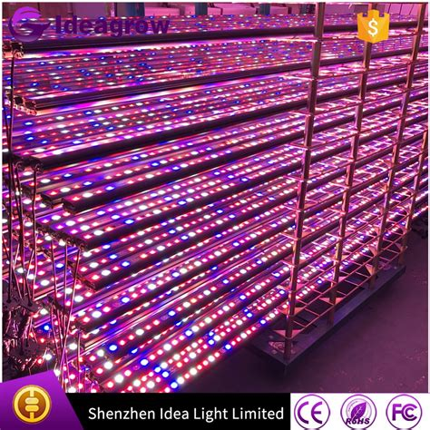 epistar led grow light led grow light malaysia importers epistar 3w led grow