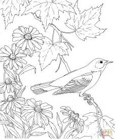printable coloring pages of birds and flowers baltimore oriole and black eyed susan maryland bird and