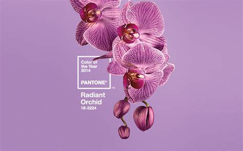 pantone color of the year 2014 pantone color of the year 2014 radiant orchid pantone 18