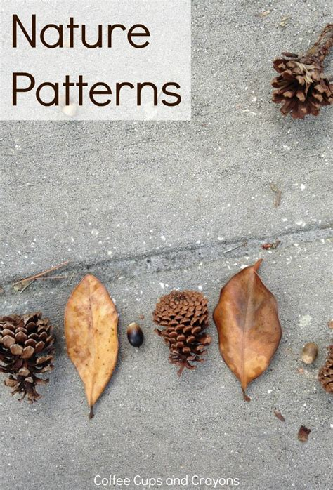 patterns in nature art activities best 25 patterns in nature ideas on pinterest nature