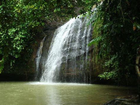 Jual Sho Caviar Di Samarinda tanah merah waterfall in samarinda