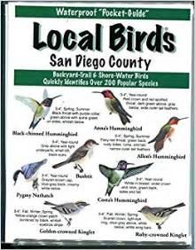 local birds of san diego county inc local birds