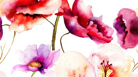 water color flower watercolor flower wallpaper
