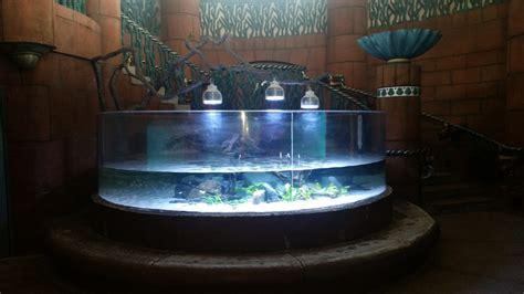 orphek led lighting for sale aquarium led light for planted tank bahamas hotel chooses