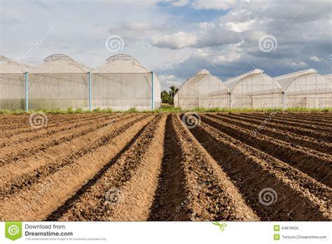 vegetable garden preparation organic vegetable garden soil preparation