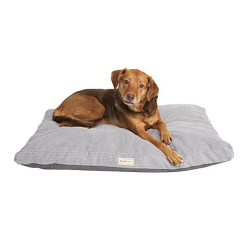 pooch planet dog bed pooch planet orthopedic pet bed big lots