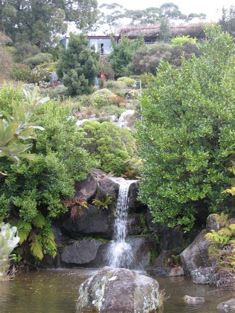 Mt Tomah Botanical Gardens Birding At Mount Tomah Botanic Gardens Trevor S Birding