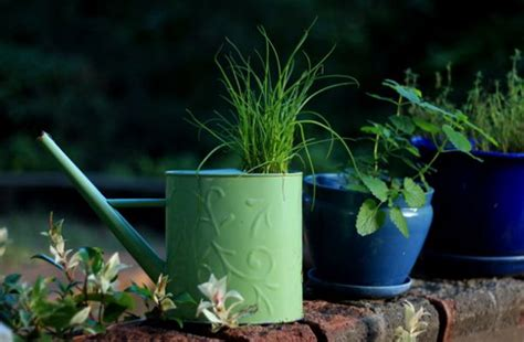 cool planters made from unusual recycled objects image 514 jpg