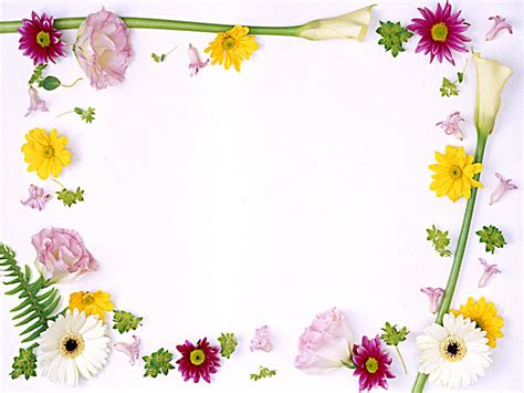 Powerpoint Background Flower Ppt Background Flower Frame Flowers Framed Backgrounds Presnetation Ppt Backgrounds