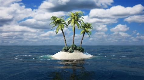 island palm sea android wallpapers