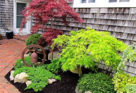 cape cod landscape search garden