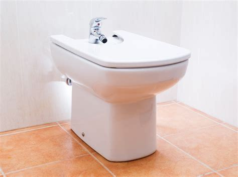 Bidet Plumbing by All About Bidets Caldwell Plumbing Serving The Gta And