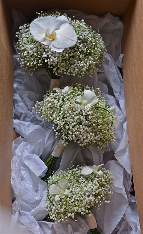 Wedding Bouquet Gypsophila by Wedding Flowers S Orchid And Gypsophila