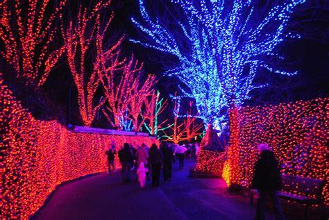 Zoo Lights Is Now Open Cathy Stubbs Realty Light Zoo