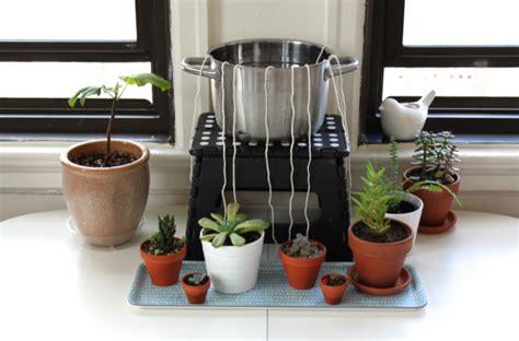 diy  watering system  houseplants info