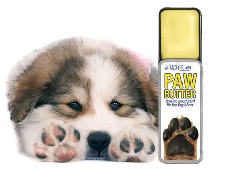 paw moisturizer paw butter organic moisturizer for paws the blissful pinklion