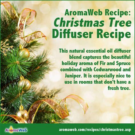 christmas aromatherapy recipe aromaweb