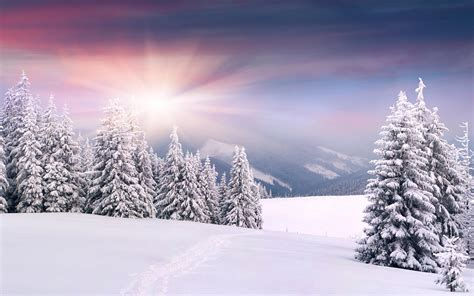 snow images snow hd wallpapers